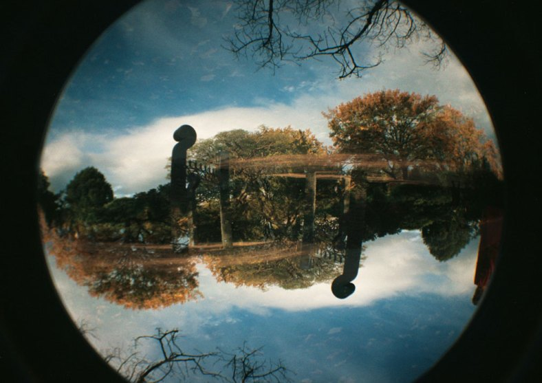 Dunedin Botanic Gardens by Thomas Lord